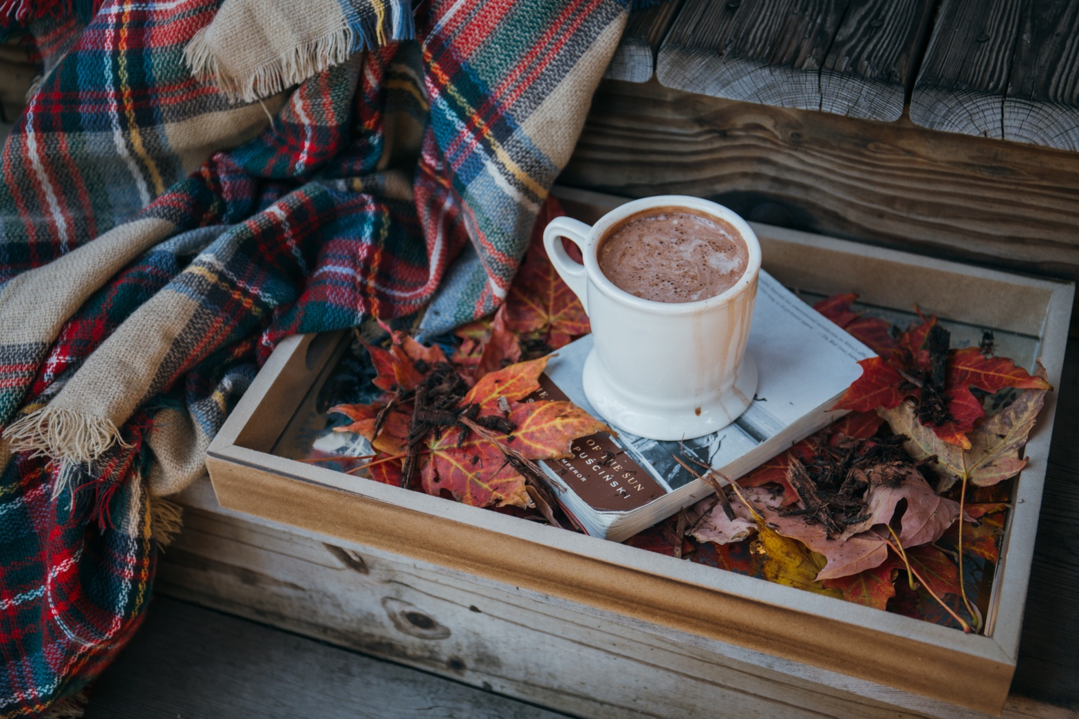 Ten favourite autumnal reads Lyndsey's Book Blog
