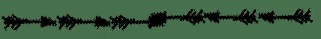 Arrow blog divider