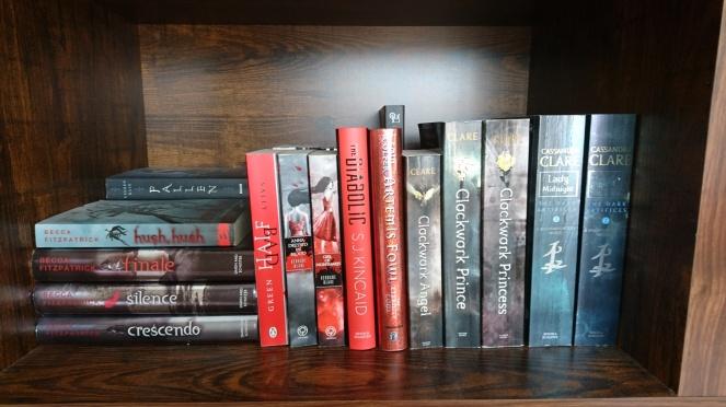 Lyndsey's Book Blog book shelf